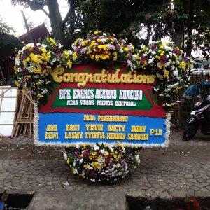Bunga Papan Congratulation 001